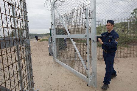 Uy ban chau Au de doa trung phat phap ly Hungary va Ba Lan - Anh 1