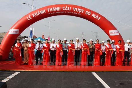 Thanh pho Ho Chi Minh dua vao hoat dong toan bo cau vuot Go May - Anh 1