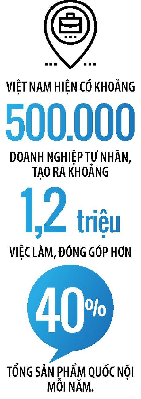 Doanh nghiep tu nhan Viet Nam lon den dau? - Anh 2