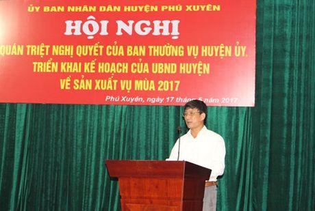 Huyen Phu Xuyen trien khai ke hoach san xuat vu mua 2017 - Anh 1