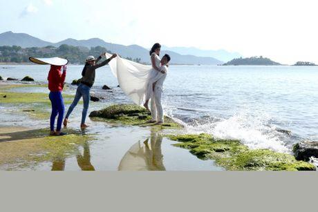 Ngan ngo ngam reu xanh ben bo vinh Nha Trang - Anh 10