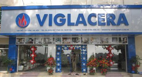 Viglacera se dau gia 120 trieu co phan vao 29/5 - Anh 1