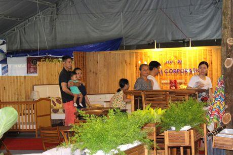 Hoi cho Do go Binh Dinh thu hut manh khach mua sam - Anh 1