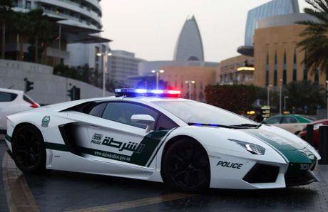 Dubai va nhung dieu khong tuong tu gioi sieu giau - Anh 4