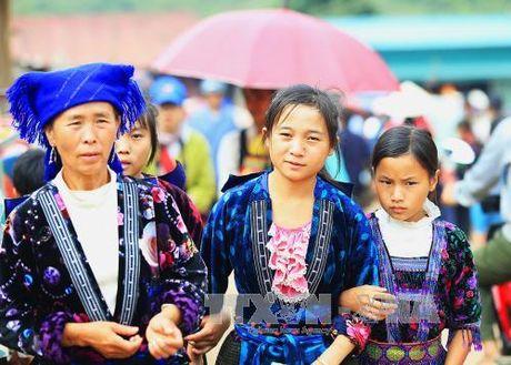 Dac sac cho phien vung cao Tua Chua, Dien Bien - Anh 1