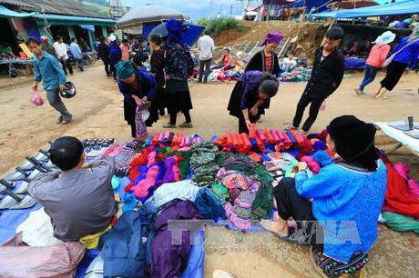 Dac sac cho phien vung cao Tua Chua, Dien Bien - Anh 3