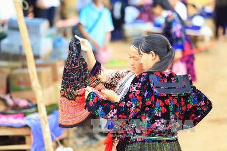 Dac sac cho phien vung cao Tua Chua, Dien Bien - Anh 4