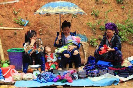 Dac sac cho phien vung cao Tua Chua, Dien Bien - Anh 5