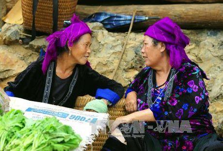 Dac sac cho phien vung cao Tua Chua, Dien Bien - Anh 6