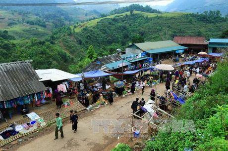 Dac sac cho phien vung cao Tua Chua, Dien Bien - Anh 7