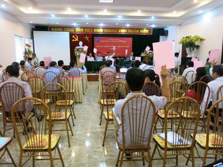 DHDCD TCty CP Song Hong: Nhat tri phuong an tai cau truc doanh nghiep - Anh 1