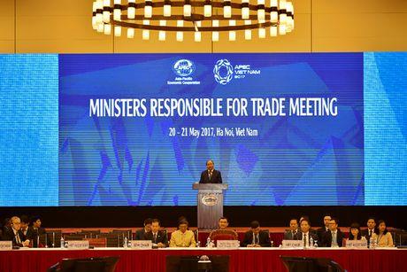 Thu tuong Chinh phu: Moi hop tac tot dep cua APEC se khong thanh neu thieu long tin - Anh 2