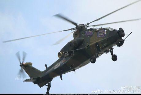 Nhung diem khien WZ-10 cua Trung Quoc 'an dut' Apache My - Anh 10