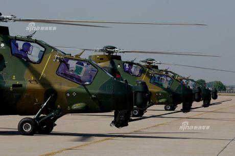 Nhung diem khien WZ-10 cua Trung Quoc 'an dut' Apache My - Anh 2