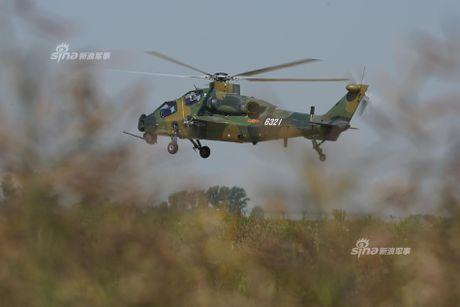 Nhung diem khien WZ-10 cua Trung Quoc 'an dut' Apache My - Anh 5