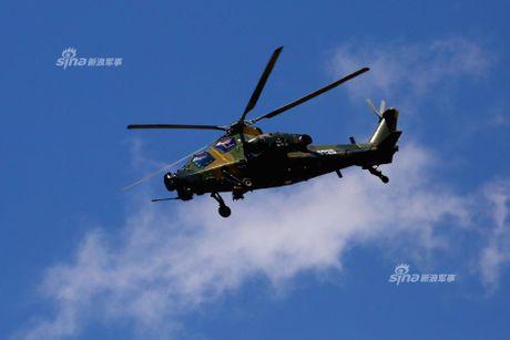 Nhung diem khien WZ-10 cua Trung Quoc 'an dut' Apache My - Anh 6