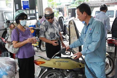Hiep hoi Xang dau: Tang khung thue moi truong xang dau la hop ly - Anh 1