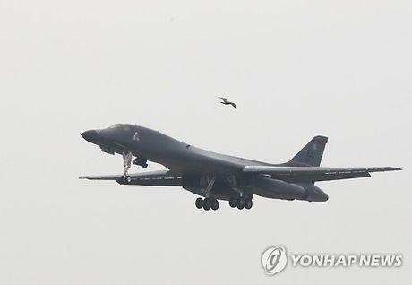 May bay nem bom B-1B My tap tran tren Ban dao Trieu Tien - Anh 6