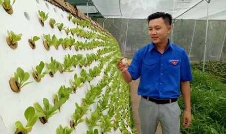 Phat dong Hanh trinh khoi nghiep Viet Nam - Anh 1