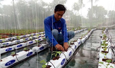 Phat dong Hanh trinh khoi nghiep Viet Nam - Anh 2