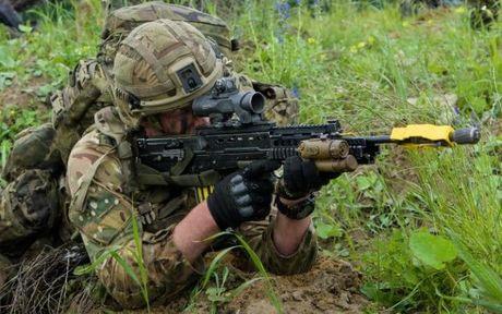 So Nga tan cong, NATO ra suc tap tran luyen binh - Anh 3