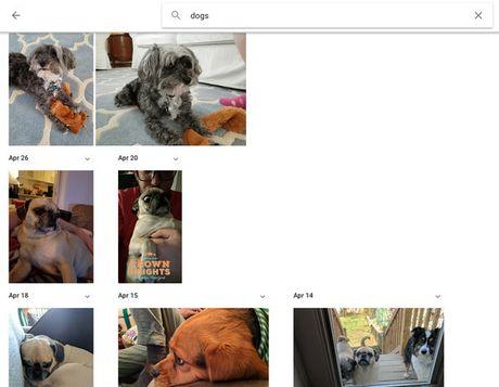 Nhung tuyet chieu lam chu Google Photos - Anh 3