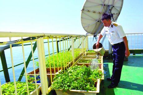 Truong Sa luon in dam trong trai tim nguoi Ha Noi - Anh 6