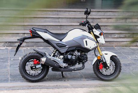 Honda MSX125 - xe 'cung' cho gioi tre Viet - Anh 2