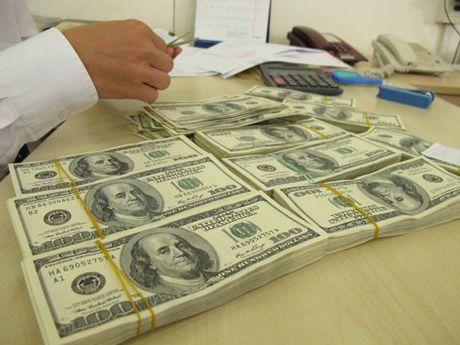 Ngan hang Nha nuoc tang gia mua USD - Anh 1
