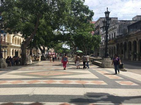 Ky su 'Mat thay, tai nghe tai Cuba': Manh dat khong tieng sung - Anh 1