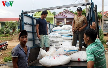 Quang Tri: Bat giu hon 8 tan duong Thai Lan lau - Anh 1