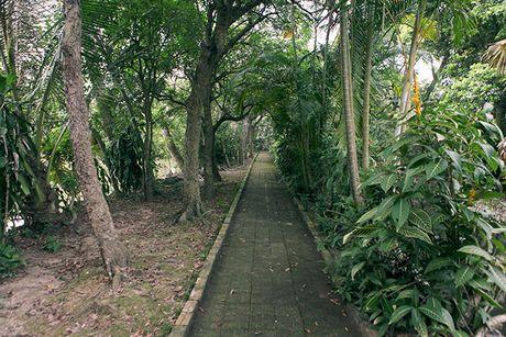 Ngam 'ao                                                          thu, ngo truc'                                                          trong chum tho                                                          Thu cua Nguyen                                                          Khuyen - Anh                                                          15