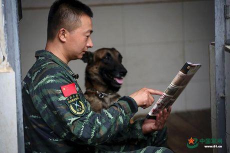 Ngam xem canh sat Trung Quoc huan luyen cho nghiep vu - Anh 4