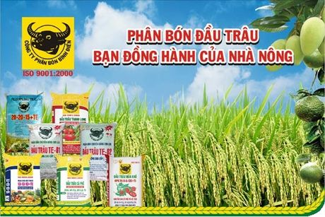 BFC uoc lai truoc thue hop nhat 253 ty nua dau nam, tang truong 24% - Anh 1