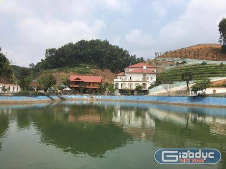 Trong thang 8 se co ket luan chinh thuc tai san em trai Bi thu Yen Bai - Anh 1