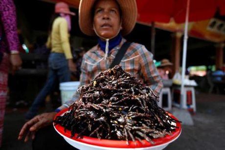 'Mat chu O mieng chu A' voi cho ban thit nhen o Campuchia - Anh 1
