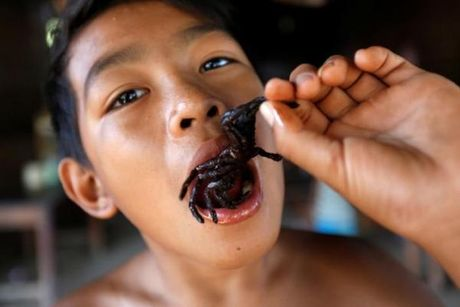 'Mat chu O mieng chu A' voi cho ban thit nhen o Campuchia - Anh 3