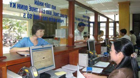 Cuc Thue Ha Noi thu ngan sach tang 20% so cung ky - Anh 1