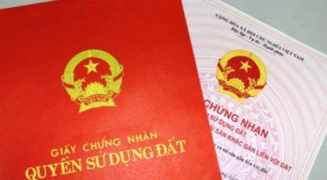 TP.HCM: Cham cap so hong phai xin loi nguoi nuoc ngoai - Anh 1