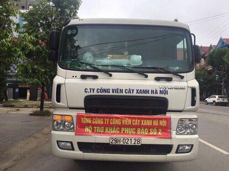 Ha Noi ho tro TP Vinh khac phuc cay gay do do bao so 2 - Anh 1