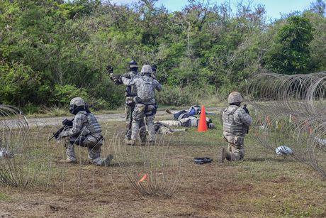 Lan dan so phan dao Guam - Anh 1