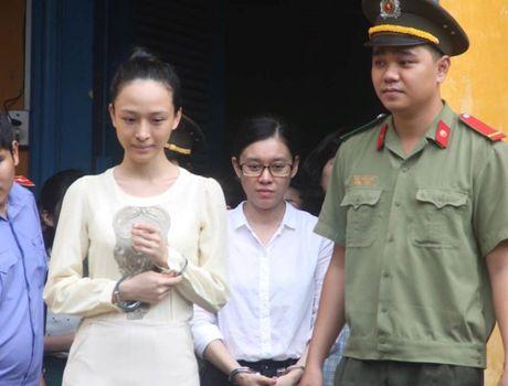 Luat su cua Cao Toan My kien nghi xu ly me Phuong Nga - Anh 3