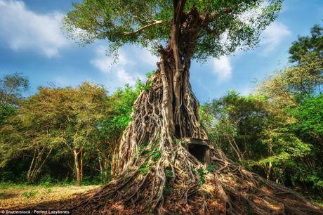 Du khach do xo toi di san van hoa moi o Campuchia - Anh 1