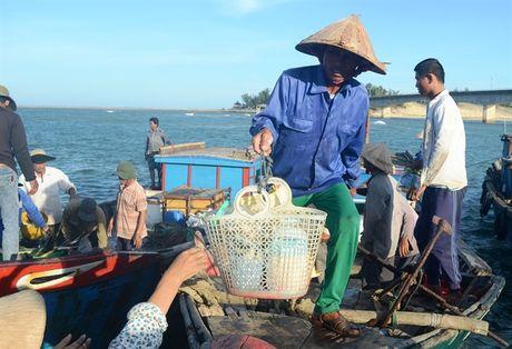 Chu tau thuyen Quang Tri do mat tim lao dong di bien - Anh 2