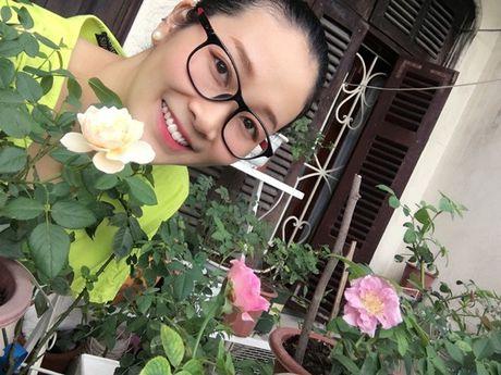 'Thien duong' hoa hong giua long Ha Noi - bo suu tap vo gia - Anh 14