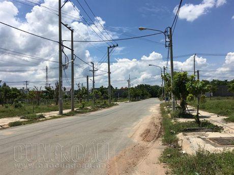 Bat dong san Binh Duong 'chet lam sang': Can giam gia ban 70 - 80% - Anh 2