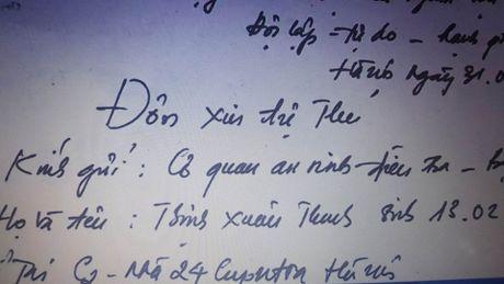 Trinh Xuan Thanh: Toi ve dau thu de doi dien voi su that - Anh 2