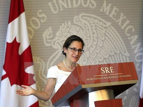 Ngoai truong Canada se co cuoc gap dau tien voi cac dong cap ASEAN - Anh 1