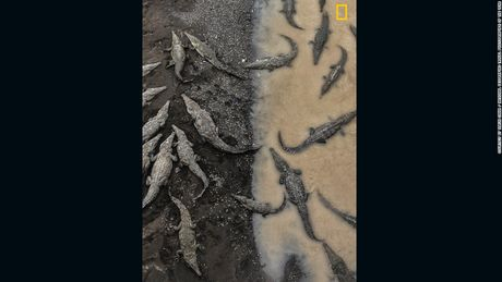 18 buc anh dat giai Nhiep anh gia Du lich cua Nat Geo - Anh 3