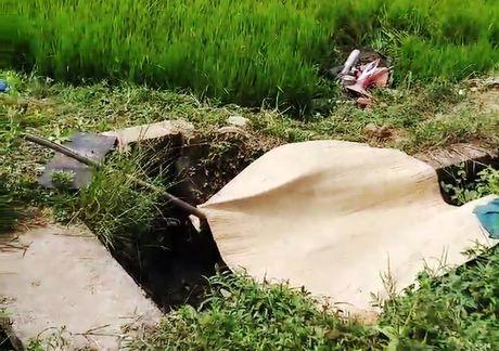 Quang Nam: Mot thi the nam gioi noi lenh benh tren muong nuoc - Anh 1